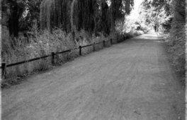 Kral • Photography » Projekt »Summer's End