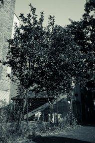 © Holger Kral • Photography - Friedhofsecken - Berlin, Cityscape, Fujifilm X70, On my Doorstep - photo #3