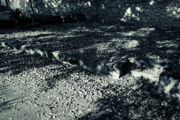 © Holger Kral • Photography - Friedhofsecken - Berlin, Cityscape, Fujifilm X70, On my Doorstep - photo #5