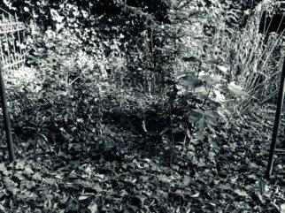 © Holger Kral • Photography - Friedhofsecken - Berlin, Cityscape, Fujifilm X70, On my Doorstep - photo #7