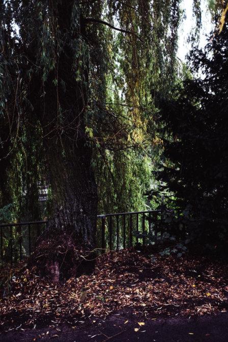 © Holger Kral • Photography - Dann Kanalecken - Berlin, Cityscape, Fujifilm X70, On my Doorstep - photo #8