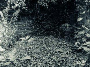 © Holger Kral • Photography - Friedhofsecken - Berlin, Cityscape, Fujifilm X70, On my Doorstep - photo #9