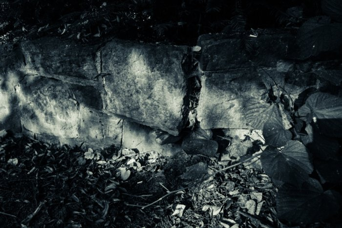 © Holger Kral • Photography - Friedhofsecken - Berlin, Cityscape, Fujifilm X70, On my Doorstep - photo #11