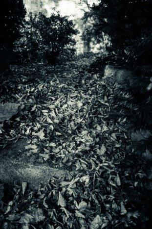 © Holger Kral • Photography - Friedhofsecken - Berlin, Cityscape, Fujifilm X70, On my Doorstep - photo #12