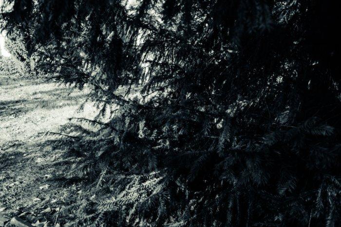 © Holger Kral • Photography - Friedhofsecken - Berlin, Cityscape, Fujifilm X70, On my Doorstep - photo #13