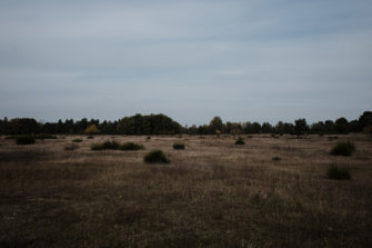 © Holger Kral • Photography - Land - Autumn, Fall, Fujifilm X70, Germany, Landscape - photo #3