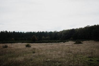 © Holger Kral • Photography - Land - Autumn, Fall, Fujifilm X70, Germany, Landscape - photo #5