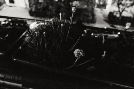 © Holger Kral • Photography - Last American Spirits - Berlin, Cityscape, Fujifilm X70, On my Doorstep - photo #6