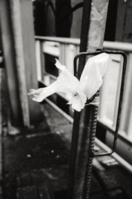 © Holger Kral • Photography - Last American Spirits - Berlin, Cityscape, Fujifilm X70, On my Doorstep - photo #11
