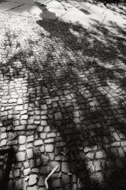 © Holger Kral • Photography - Last American Spirits - Berlin, Cityscape, Fujifilm X70, On my Doorstep - photo #13