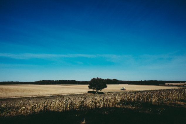 © Holger Kral • Photography - Vorbei - Fujifilm X70, Germany, Landscape, Summer - photo #12