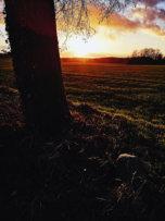 © Holger Kral • Photography - Land geschafft - Fall, Germany, Landscape - photo #3