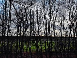 © Holger Kral • Photography - Land geschafft - Fall, Germany, Landscape - photo #4